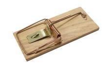 Past na myš dřevěná, 100 x 46mm